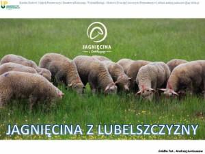 Jagniecina z Lubelszczyzny