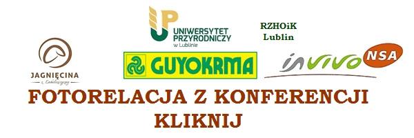 konferencja 3